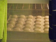 Batch #2: baking